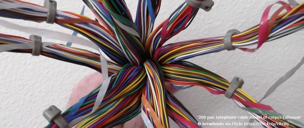 Creating an IXP in Denver, Colorado, USA Thumbnail