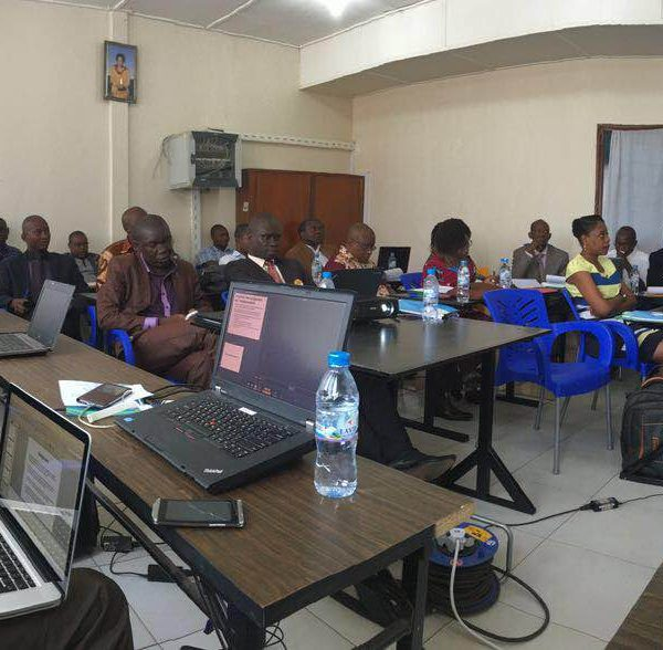 Strengthening Capacity and Interconnection in Central African Republic
