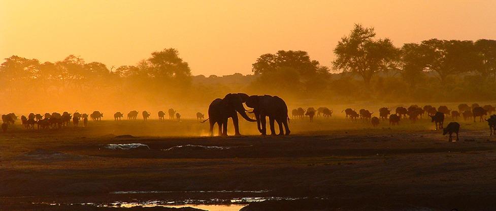 Welcome ISOC Zimbabwe Thumbnail