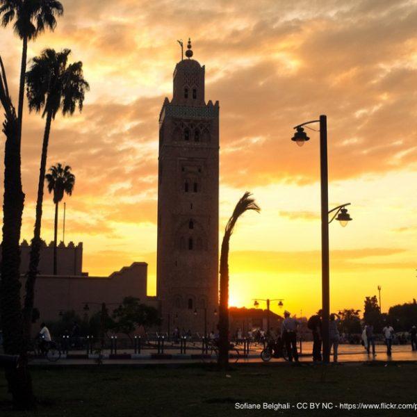 The IANA Stewardship Transition: All Eyes Turn Toward Marrakech (ICANN 55) Thumbnail