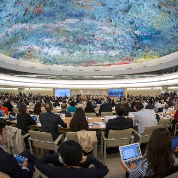 Dive With Us Into The 29th Human Rights Council Happening This Week